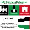 UAE Business Database
