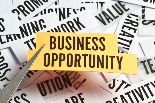 business opportunity seekers leads